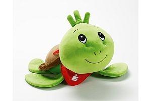 Deuscher Sparkassenverlag 215333211 Kopie 300x200 - Terrific turtle