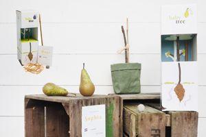 GreenEarth babytree1 Kopie Kopie - Kommunikatives Produkt 2018