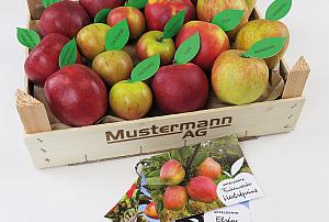 Herzapfelhof Bio Apfelprobierkiste 300x202 - Premium Products 2021